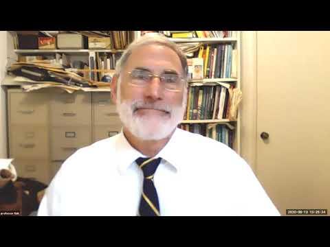 Professor Fink