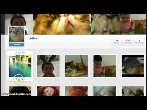 Instagram likes for free August 2013