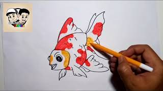 102 Ikan Koki Lucu Video Playkindleorg