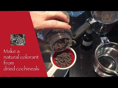 Step by step natural colorant with  cochineals