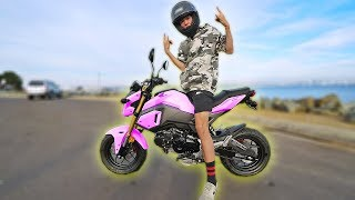 BUYING MY NEW 2018 HONDA GROM! *REVEAL*