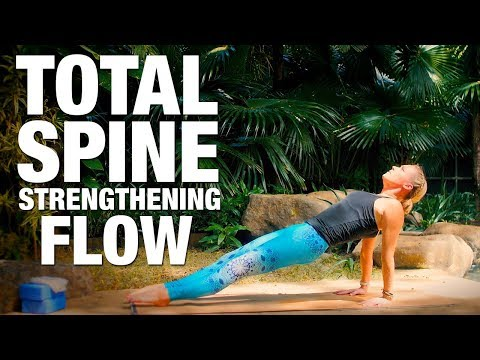 Total Spine Strengthening Flow Yoga Class - Five Parks Yoga