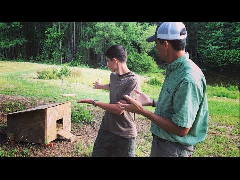 DIY Duck Nesting House (and moving our beehives)
