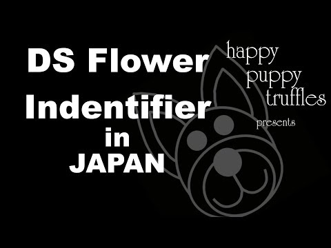 DS Flower and Bug Identifier in Japan - Japanese VLOG