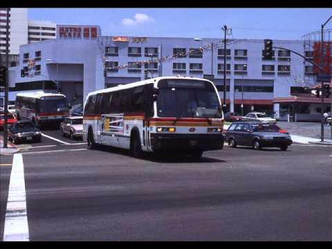 SCRTD LACMTA Advance Design Buses 1980-2007