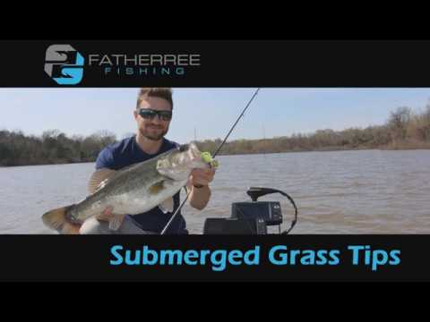 Spring Largemouth Bass Fishing Tips and Techniques - How to Catch Bass in Submerged Grass