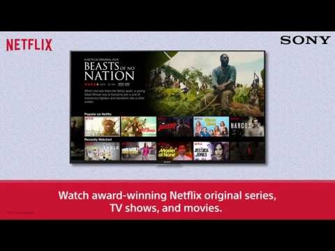 SONY Android TV : Netflix
