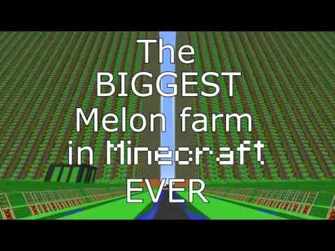 [4.200.000+] The biggest Melon farm EVER in Minecraft! 3143/s - 60 FPS
