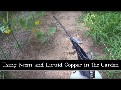 Using Neem and Liquid Copper in the Garden