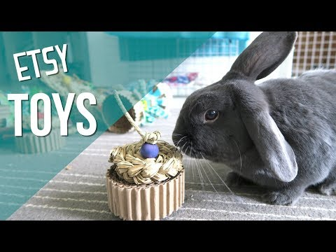 Awesome Homemade Rabbit Toys