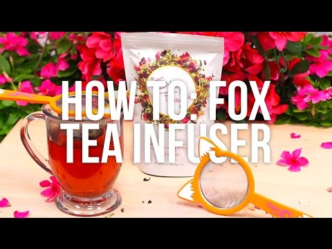 Skinny Fox Detox Fox Infuser Tutorial