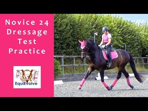 Novice 24 Dressage Test Practice