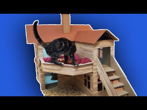 How to make a Cat House from Cardboard
