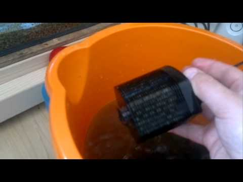 68. JBL Cristal profi i60 filter review and cleaning
