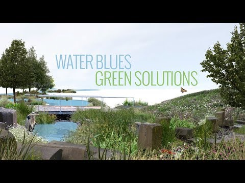 Water Blues Green Solutions