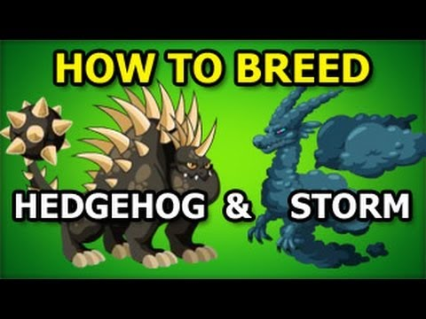 How to Breed HEDGEHOG Dragon and STORM Dragon in Dragon City Guide