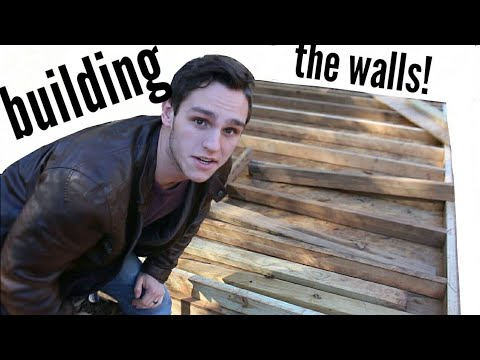 Building a Shed on a Budget (part 3 framing the walls)
