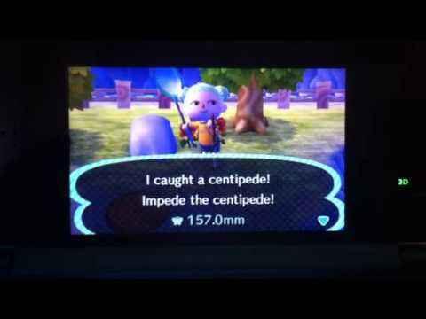 Centipede - Animal Crossing: New Leaf