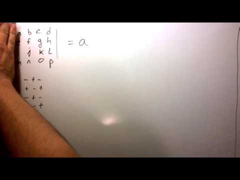 Taking the Determinant of a 4x4 Matrix (and larger)