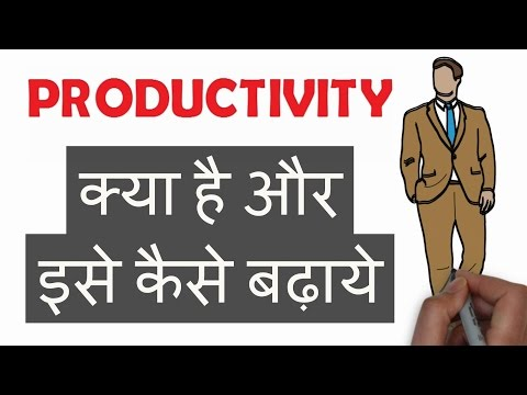What is Productivity in Hindi (Tips to Increase,  Improvement Techniques) |PRODUCTIVITY क्या है?|
