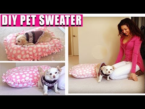 DIY Cheap Pet Sweater - DIY Pet Bed - EASY NO SEWING