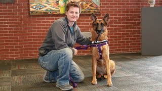 The Service Dogs Helping Veterans With PTSD