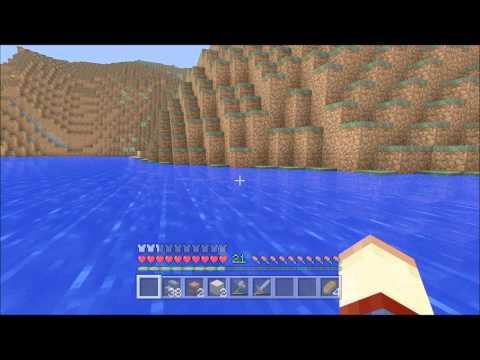 Some of the rarest things you will ever find in minecraft