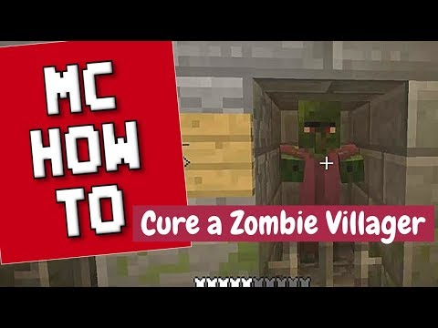 Minecraft How To - Cure a Zombie Villager/Tutorial