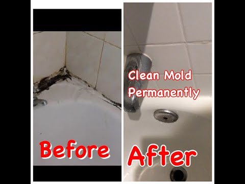 How to clean Mold safely and easily | How to clean Mold from Kitchen Sink, bathtub, bathroom & walls