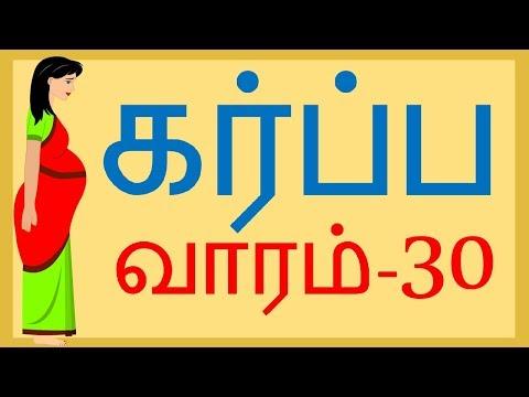 Pregnancy   Tamil   Week by Week   Week 30