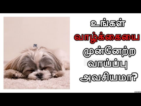 You need CHANGE to improve your life not a Chance | Epic Quotes | Tamil Motivation Video