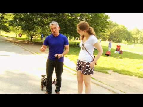 Dog Whisperer Exclusive: Training a Difficult Dog - Woman's Day Magazine