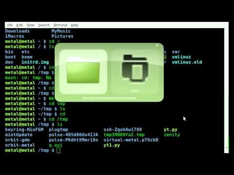 cd basics in BASH - Linux