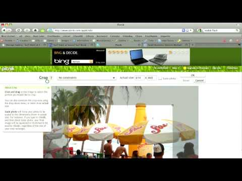 How to edit photos for your website using Picnik | Local Knowledge Episode 22