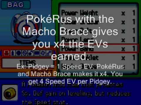 How To EV Train a Pokemon