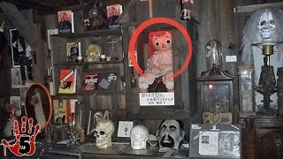 Download 5 Scary Items At The Warren Occult Museum Video