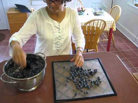 Dehydrating Blueberries the Easy Way