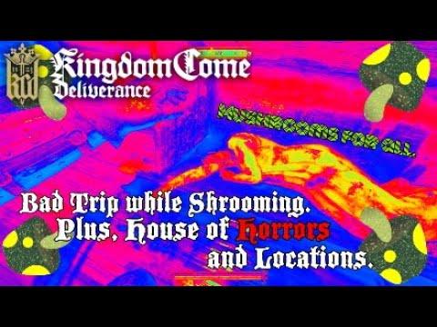 Kingdom Come Deliverance One bad Night.