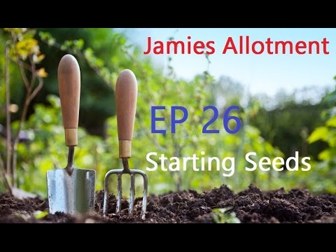 Jamie's Allotment | Sowing Seeds | Tidying Up & The Edible Garden Show
