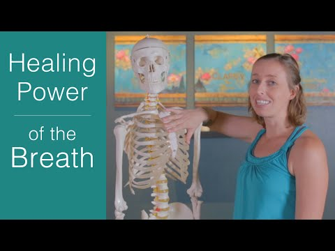 Learn to Breathe Correctly: Why belly breathing is the key to health