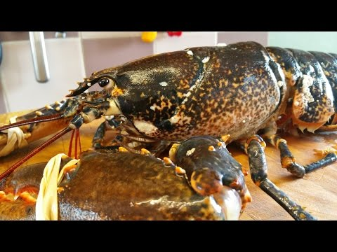 How To Prepare And Cook A Live Lobster 2. TheScottReaProject.