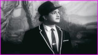 Dorikithe Dongalu Telugu Movie Scenes - Part 4   NTR   Jamuna   Gummadi