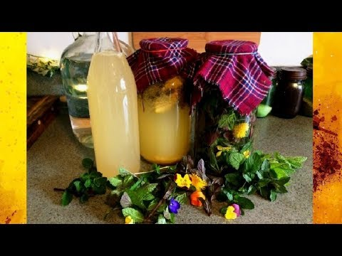 Vinegar Making: Mint Dandelion Pansy