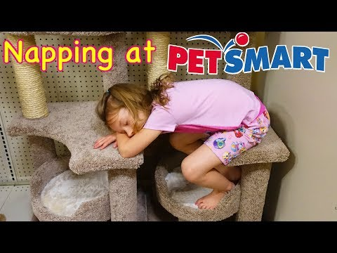 NAPPING AT PetSmart - Kids Checking Out Pets at the Pet Store