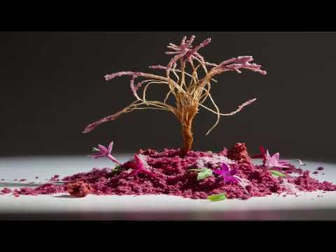Spanish Gastronomy & Cultural Innovation