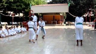 Villa Zorn , Esibizione Di Karate