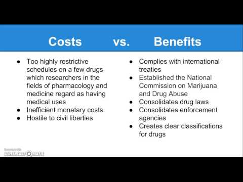 Public Policy: The Controlled Substances Act