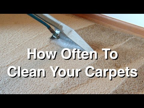 How Often to Clean Your Carpets and Why