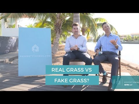 Fake Grass vs Real Grass?