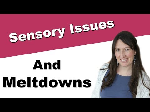 Meltdowns: A Sensory Processing Integration Issue?